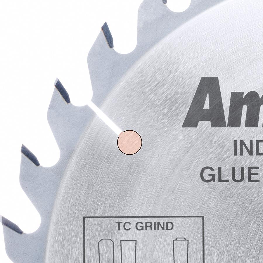 610301 Carbide Tipped Glue Line Ripping 10 inch Dia x 30T TCG, 22 Deg, 5/8 Bore