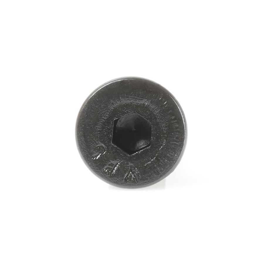 67146 Socket Head Allen Retaining Screw #10-32 x 3/8 NF